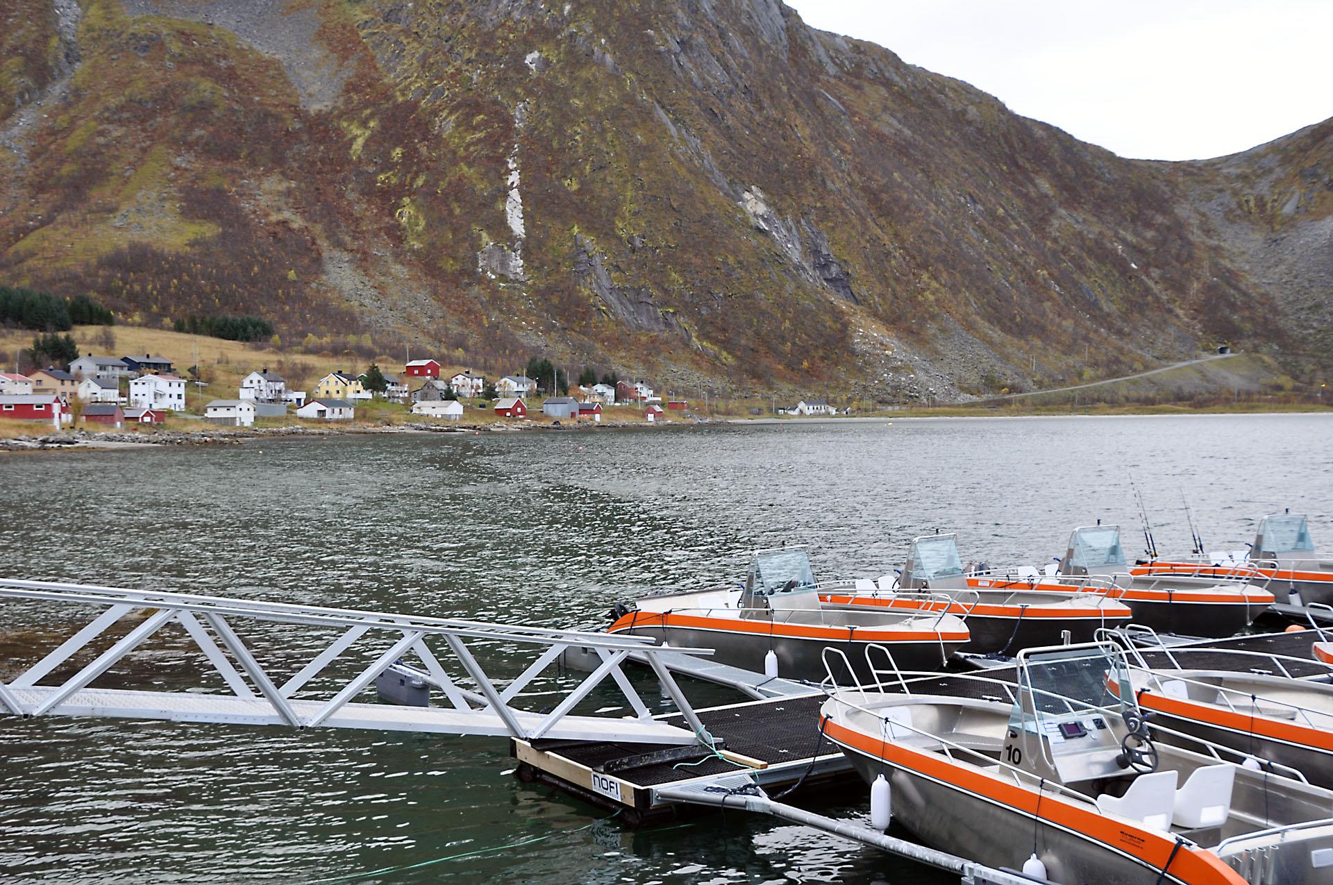 Steinfjord 01