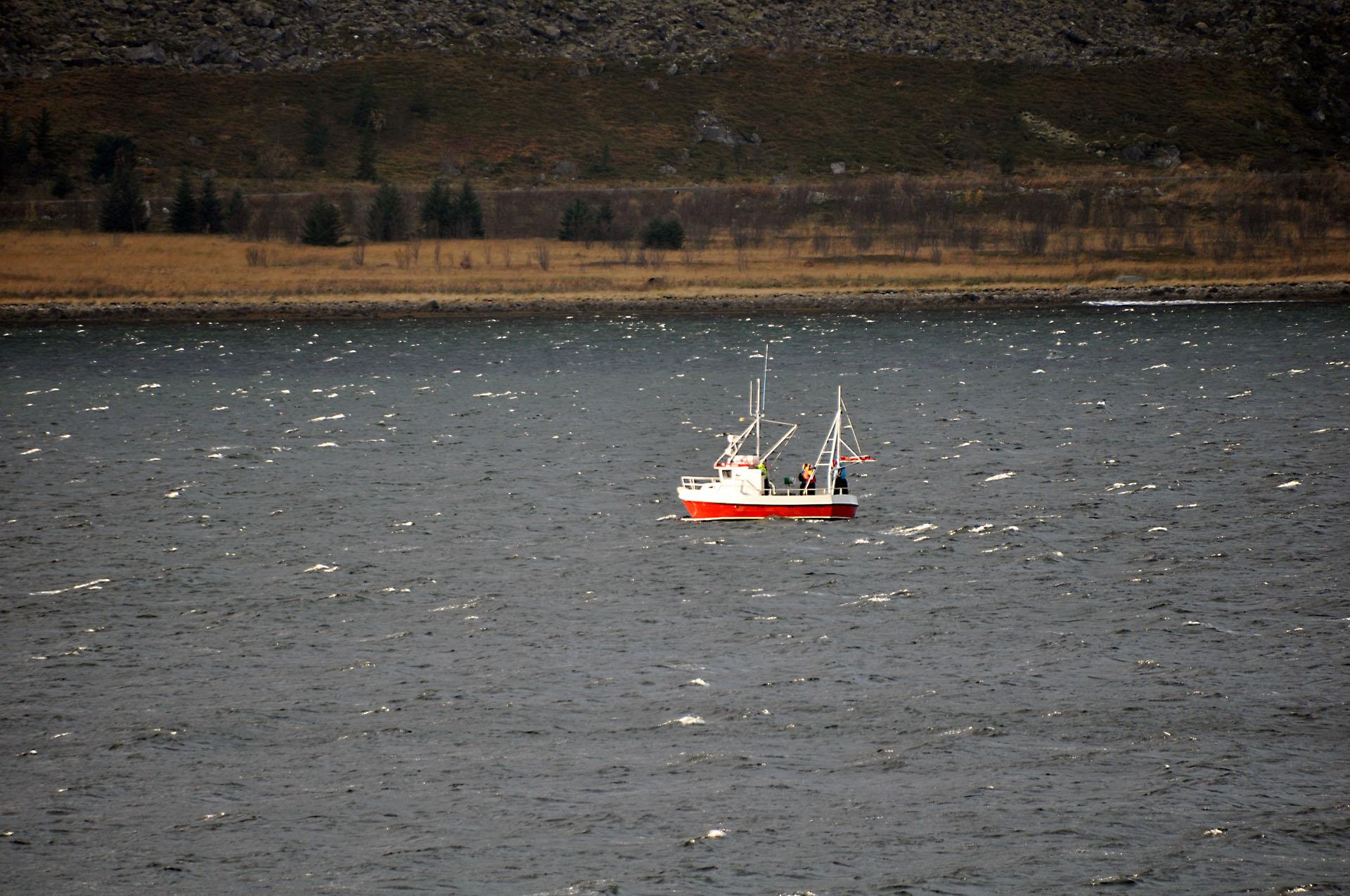Steinfjord 15