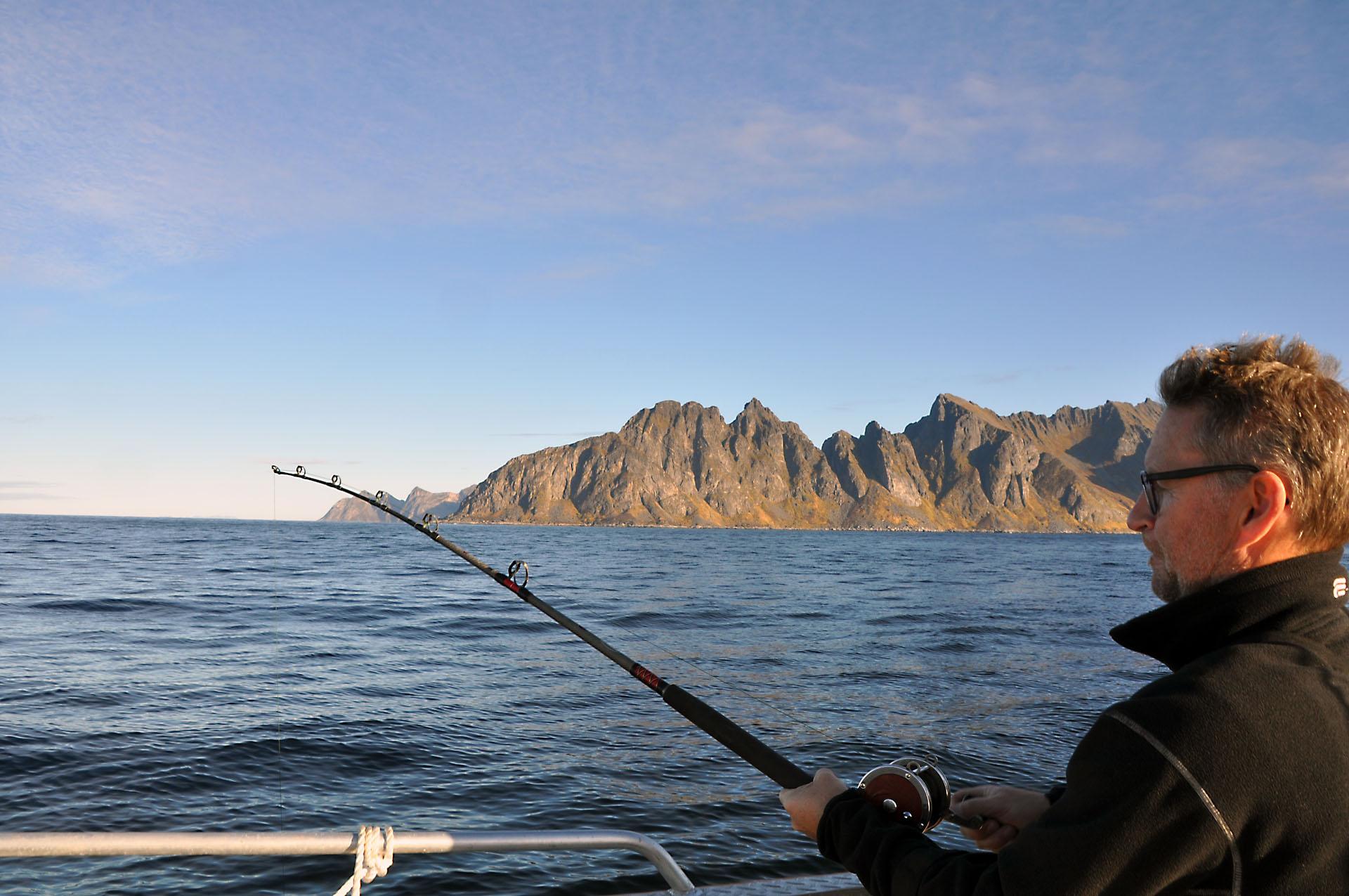 Steinfjord 19