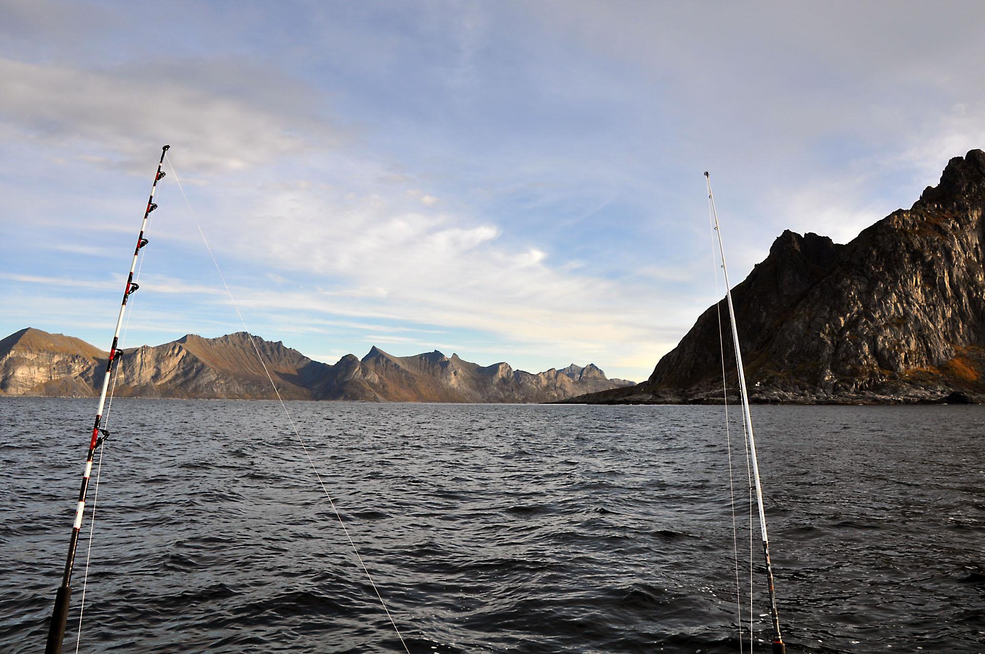 Steinfjord 30
