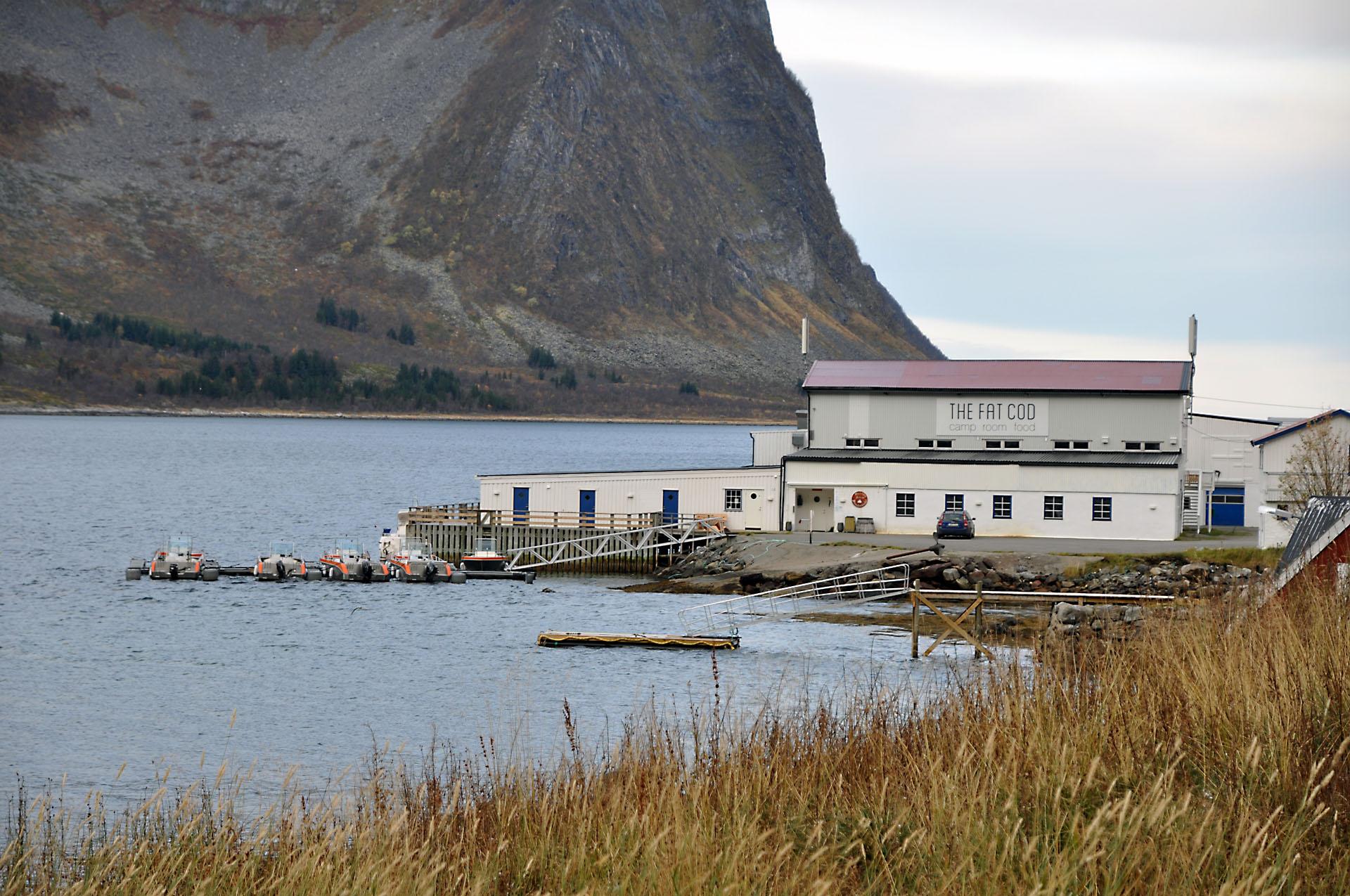 Steinfjord 37