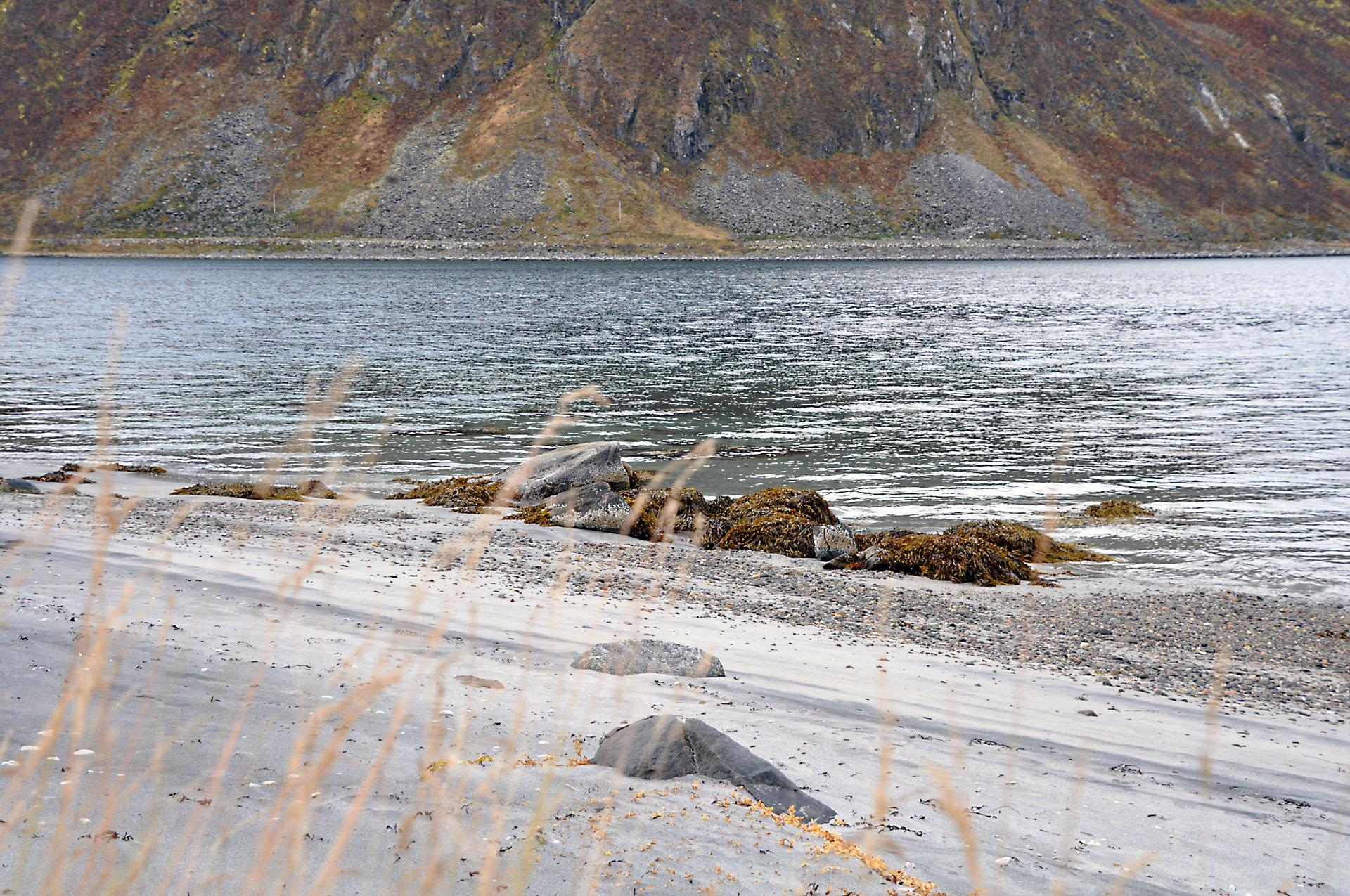 Steinfjord 43