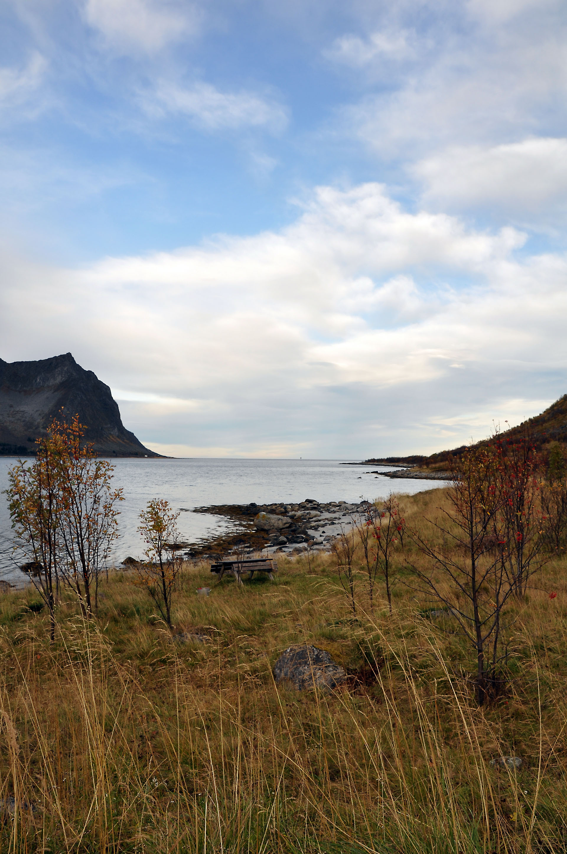 Steinfjord 44