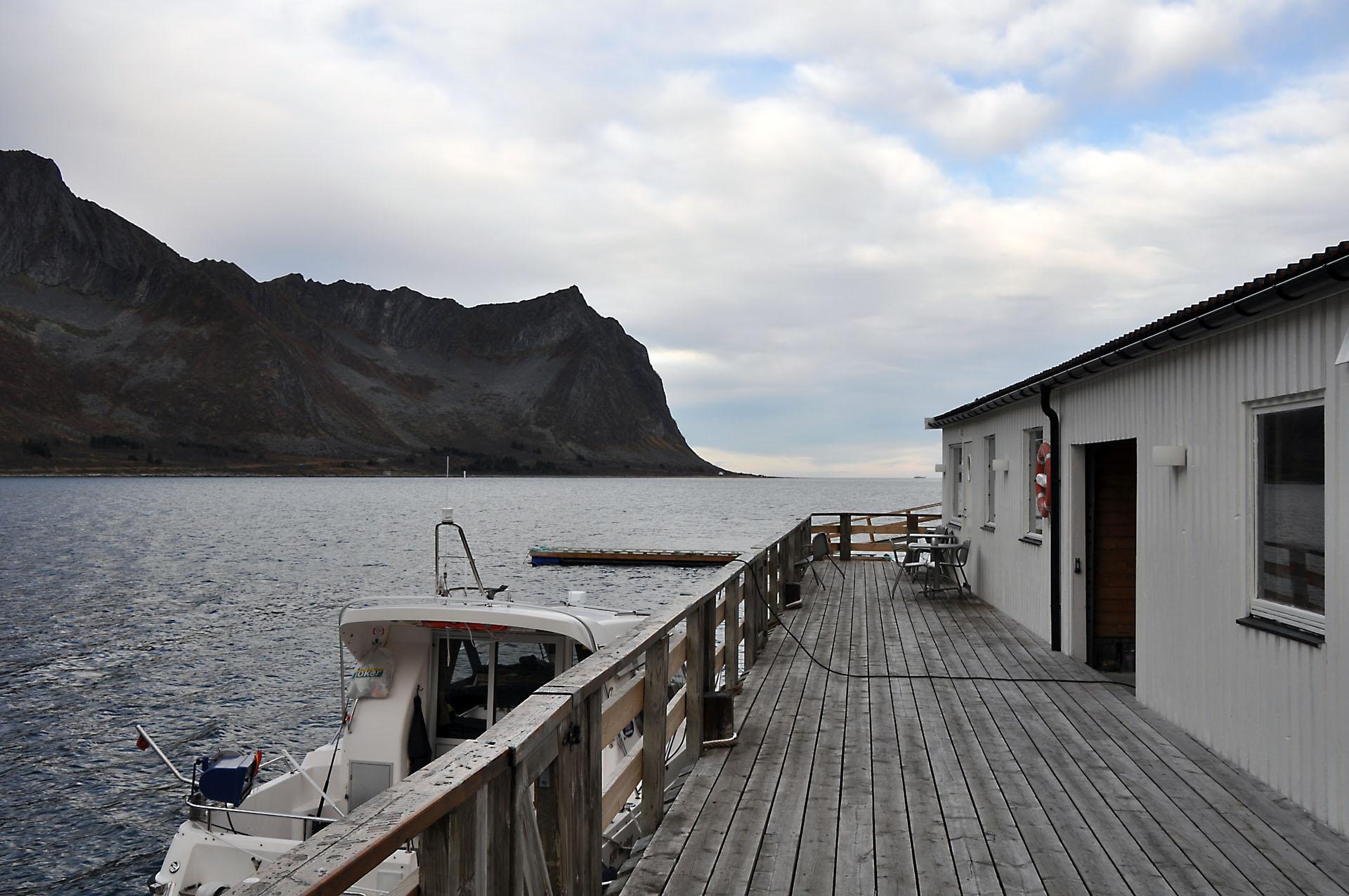 Steinfjord 49